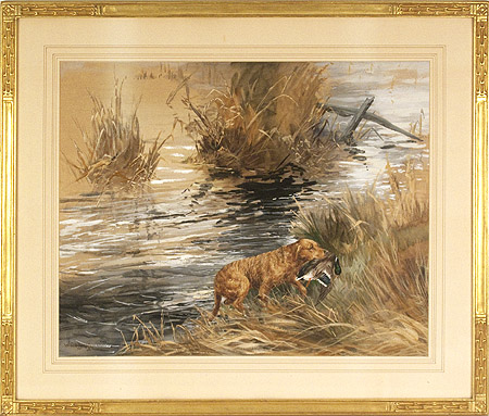 William Secord Gallery Inc Chesapeake Bay Retriever